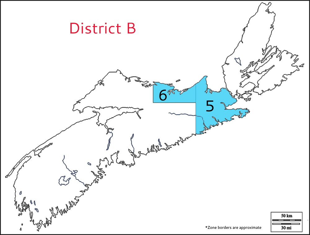 district b